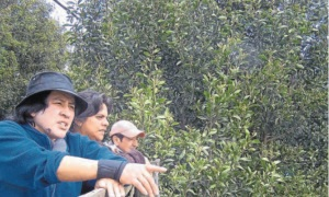Gloria Ballesteros, Mónica Santacruz y Víctor Manuel Díaz hablan del vendaval.