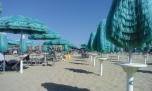 Las sombrillas y palmas son diferentes en cada playa privada