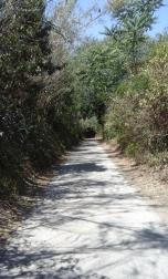 Parque de la Cafarella